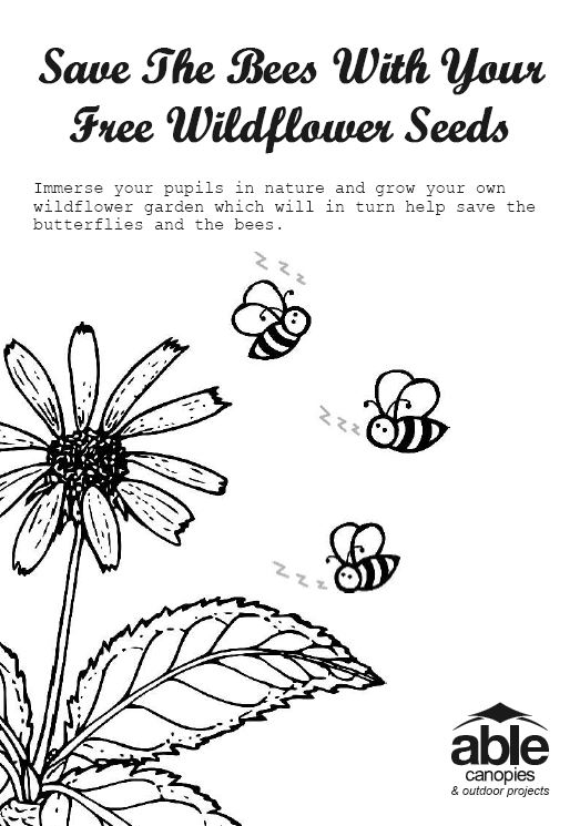 Free Wildflower Seed Growing Guide and Activity Pack